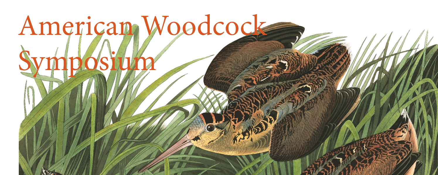 American Woodcock Symposium